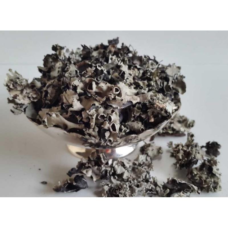 Buy Black Stone Flower Online, Stone flower, Dagadphool ... Black Stone Flower