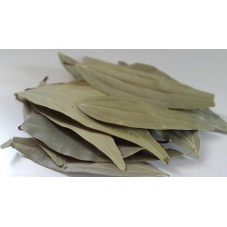 Bay Leaves (Tamalpatta)