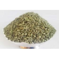 Fennel seeds (Badishep / Saunf)