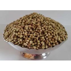 Coriander seeds (Dhana)