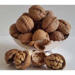 Whole Walnuts (Akkha Akrod)